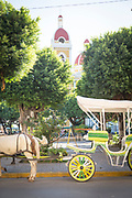 Side view of a horse-drawn carriage on the street in the city of Granada, Nicaragua
