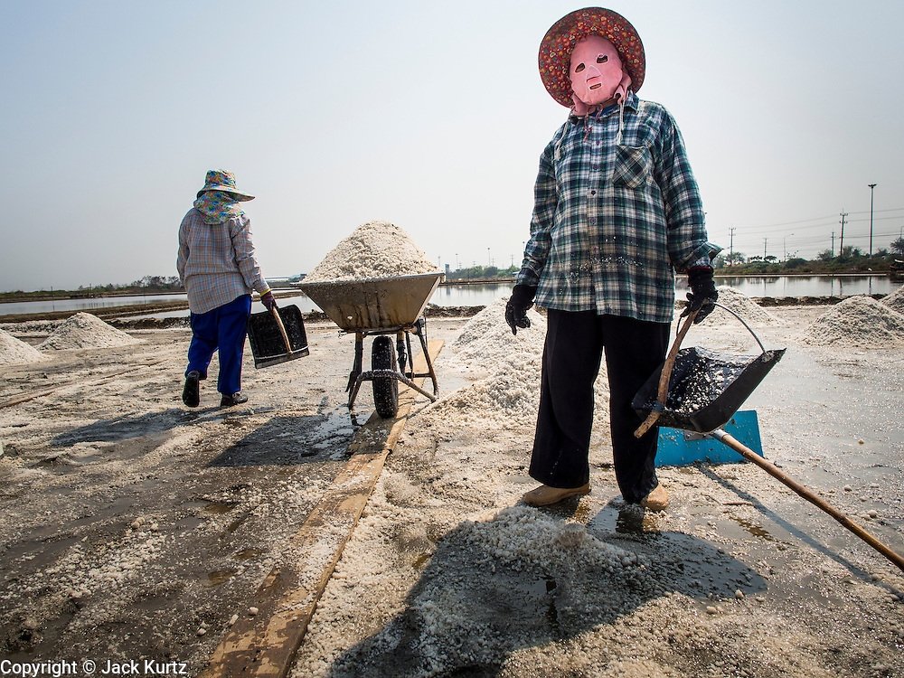 """28 MARCH 2014 - NA KHOK, SAMUT SAKHON, THAILAND: Workers collect salt in an evaporation pond in Samut Sakhon province. Thai salt farmers south of Bangkok are experiencing a better than usual year this year because of the drought gripping Thailand. Some salt farmers say they could get an extra month of salt collection out of their fields because it has rained so little through the current dry season. Salt is normally collected from late February through May. Fields are flooded with sea water and salt is collected as the water evaporates. Last year, the salt season was shortened by more than a month because of unseasonable rains. The Thai government has warned farmers and consumers that 2014 may be a record dry year because an expected """"El Nino"""" weather pattern will block rain in mainland Southeast Asia. Salt has traditionally been harvested in tidal basins along the coast southwest of Bangkok but industrial development in the area has reduced the amount of land available for commercial salt production and now salt is mainly harvested in a small parts of Samut Songkhram and Samut Sakhon provinces.    PHOTO BY JACK KURTZ"""