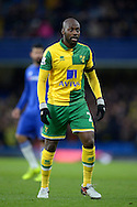 Youssuf Mulumbu of Norwich City looking on. Barclays Premier league match, Chelsea v Norwich city at Stamford Bridge in London on Saturday 21st November 2015.<br /> pic by John Patrick Fletcher, Andrew Orchard sports photography.