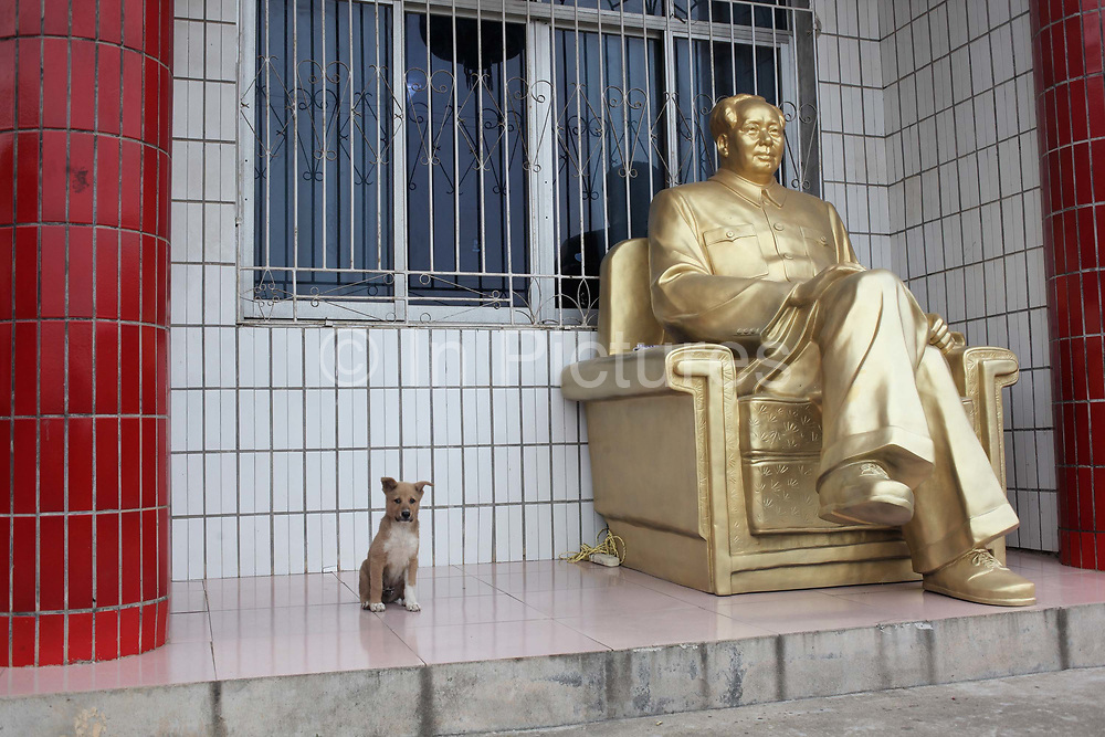 """A puppy sits next to a statue of Mao Zedong at the home of a """"Red"""" memorabilia collector and manufacturer, near Mao's birthplace in Shaoshan, Hunan Province, China on 12 August 2009.  The village of Shaoshan, in rural Hunan Province, is tiny in size but big in name. It was the childhood home for Mao Zedong, the controversial revolutionary who came from obscurity but eventually defied all odds conquered China in the name of communism. Now his home, a sacred place among China's official propaganda, is in reality a microcosm of the country itself: part commercialism, part superstition, with a dash of communist ideological flavor."""