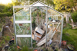 Neglected greenhouse in need of renovation