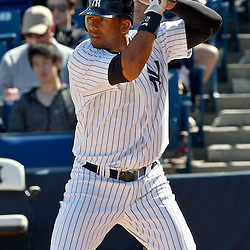 March 4, 2012; Tampa Bay, FL, USA; New York Yankees right fielder Chris Dickerson (41) during spring training game at George M. Steinbrenner Field. Mandatory Credit: Derick E. Hingle-US PRESSWIRE