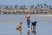 Dog Beach, Ocean Beach, San Diego, California