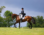 Free To Use Image. Ian Hannon, Tallow, Co. Waterford rides 'She's My Master' in anticipation of the Dressage event for the Camphire International Horse Trials & Festival 2013, Cappoquin Co. Waterford which will take place from 26th - 28th July.  This year's Festival offers something for everyone and includes a host of events for all the family including Birds of Prey displays, Archery,  Dog Shows, Childrens' Activities and a Food Fair.  See www.camphirehorsetrials.com. Picture: Patrick Browne<br /> <br /> <br /> The Course is Set for Camphire International Horse Trials & Festival 2013<br /> <br /> ·        3 Day Festival Promises Fun Filled Activities For All!<br /> <br />  <br /> <br /> Olympic Equestrian Course Designer Mike Etherington Smith visited the Camphire Estate, Cappoquin Co. Waterford this weekend in preparation for the Camphire International Horse Trials & Festival which will take place this year from the 26th to the 28th July.<br /> <br /> Competitions at three, two and one star levels will be included in the International programme and Mr Etherington-Smith will once again design the CIC*** track. Several of the Irish high performance squads will use Camphire as part of their selection process and in particular the Junior and Young rider squads will be required to run in the CIC**YR class.<br /> <br /> This year's Festival offers something for everyone and includes a host of events for all the family including Birds of Prey displays, outdoor pursuits such as Archery,  a Climbing Wall, Garden Games including Giant Jenga and a free Childrens' Arts & Craft Tent.  Irish food producers including Butlers Ice-Cream, Summerhouse Bakery and O'Flynns Gourmet Sausages will be amongst the many great producers providing the fare at this year's event.  Other highlights include a Dog Show which will take place on Sunday 28th with prizes for best Large, Medium, Small breeds and a special category for puppies!<br /> <br /> Ladies and gentlemen are also advised to dress