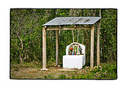 SHOT 2/17/19 1:56:47 PM - A small, simple covered roadside capilla featuring an image of Nuestra Senora de Guadalupe along Highway 184 near Polyuc, Quintana Roo, Mexico. The capillas are often dedicated to certain patron saints, such as Nuestra Senora de Guadalupe, or individuals who have died at or near the site. Often times they contain prayer candles, pictures, personal artifacts or notes. (Photo by Marc Piscotty / © 2019)
