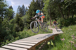 Two mountain bikers riding on footbridge through forest, Zillertal, Tyrol, Austria