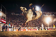 "The rider has to stay on the bull for 8 seconds, anyone who falls off before is disqualified and ""beats the dust"", as they say in rodeo slang."