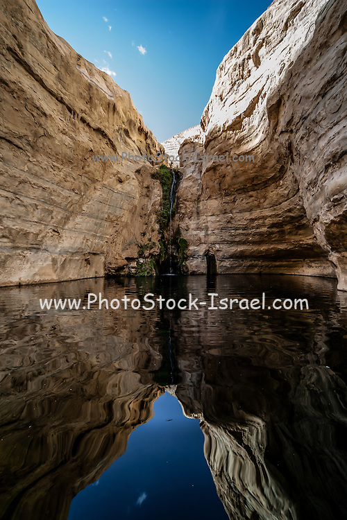 Ein Avdat or Ein Ovdat oasis is a canyon in the Negev Desert of Israel, south of Kibbutz Sde Boker. Archaeological evidence shows that Ein Avdat was inhabited by Nabateans and Catholic monks. Numerous springs at the southern opening of the canyon empty into deep pools in a series of waterfalls. The water emerges from the rock layers with salt-tolerant plants like Poplar trees and Atriplexes growing nearby.