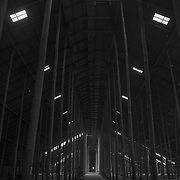 Avenue of Forgetfulness<br /> <br /> Avenue of Poles<br /> Stick Shed<br /> Murtoa