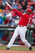 May 14, 2006, Cincinnati, Ohio, USA;   Ken Griffey Jr of the Cincinnati Reds connects on a pitch from Tom Gordon in the bottom of the 12th inning to lineout to first baseman Ryan Howard for the final out of a 2-1 loss for the Reds.