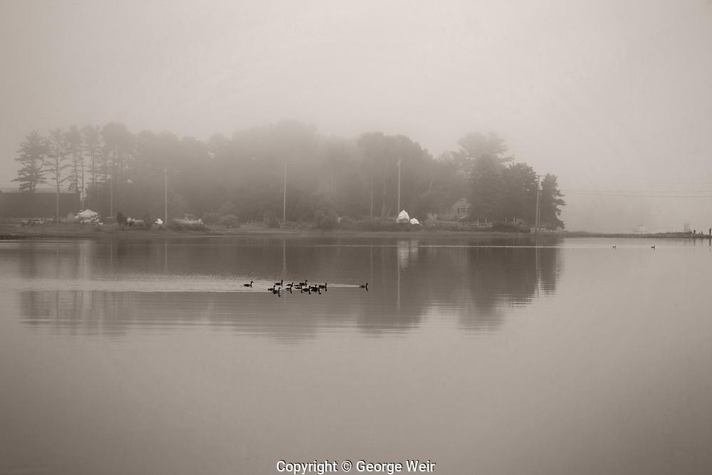 Morning Light, Brave Boat Harbor, Maine