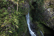 Waterfalls are abundant in the rainforest climates of eastern Maui, Hawaii, on Thursday, Oct. 31, 2013. (© 2013 Cindi Christie/Cyanpixel)