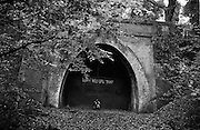 """Peering through a hole in the huge metal door of an old Victorian tunnel, two children stand on the place where a railway once emerged from this brick entrance - a link between nearby Dulwich and the Crystal Palace. Now the London Wildlife Trust maintains this once-wild wood at Sydenham, South London, England, which has reverted to forest again, 40 years after (one of the first the electrified railways) line fell silent. The brother and sister look through to see if there is light at the end of this tunnel but it has long been bricked up, sealed to deter vandals and danger to all. It is Autumn and the leaves on the beech and oak trees are about to fall, adding to the already organic deep forest floor. From a personal documentary project entitled """"Next of Kin"""" about the photographer's two children's early years spent in parallel universes. Model released"""