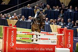 Engfer Steffen, GER, Dapardie<br /> Veolia Championat<br /> Braunschweig - Löwenclassics 2019<br /> © Hippo Foto - Stefan Lafrentz