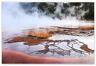 Rising steam at the Grand Prismatic Spring, Midway Geyser Basin, Yellowstone National Park, Wyoming, USA