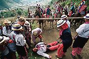 Patron saint festival horse race accident at Todos Santo de Cuchumatan, Guatemala.