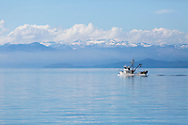 Cruising in Frederick Sound and Chatham Strait in search of wildlife Alaska Inside Passage, USA, America