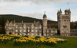 Spring at Balmoral Castle 23/4/17