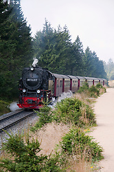 Steam train passing through Harz National Park