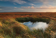 A pool on the boggy expanse of Ringinglow Moor which extends  between Stanage and the outskirts of Sheffield, Peak District