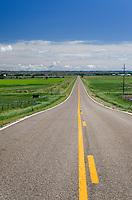 Road near Terry Montana