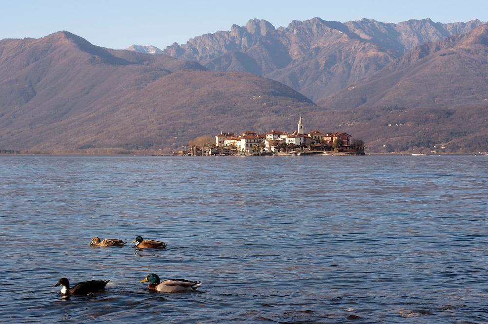Idyllic Lake Maggiore landscape, Isola dei pescatori, Italy