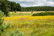 17-07-2017 - Foto's van WINSTONGolf in Vorbeck Duitsland