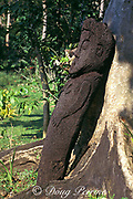 Epi-style tree fern or black palm figure, Epi Island, Vanuatu,<br /> formerly known as New Hebrides,South Pacific
