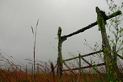 Velha porteira de fazenda. FOTO: Eduardo Rocha/Preview.com