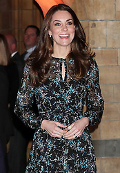 The Duchess of Cambridge attends a tea party in honour of 'Dippy' the Dinosaur at The Natural History Museum, London, UK, on the 22nd November 2016. Picture by Yui Mok/WPA-Pool. 22 Nov 2016 Pictured: Catherine, Duchess of Cambridge, Kate Middleton. Photo credit: MEGA TheMegaAgency.com +1 888 505 6342