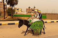 Egyptians riding donkeys, Abydos, Egypt