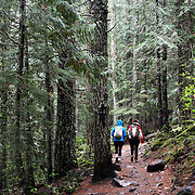 """The film adaptation of Cheryl Strayed's memoir, """"Wild,"""" stars Reese Witherspoon as a troubled woman who challenges herself by hiking the Pacific Crest Trail in Oregon. The Mirror Lake Trail leads to Tom Dick and Harry Mountain, in Government Camp, Ore."""