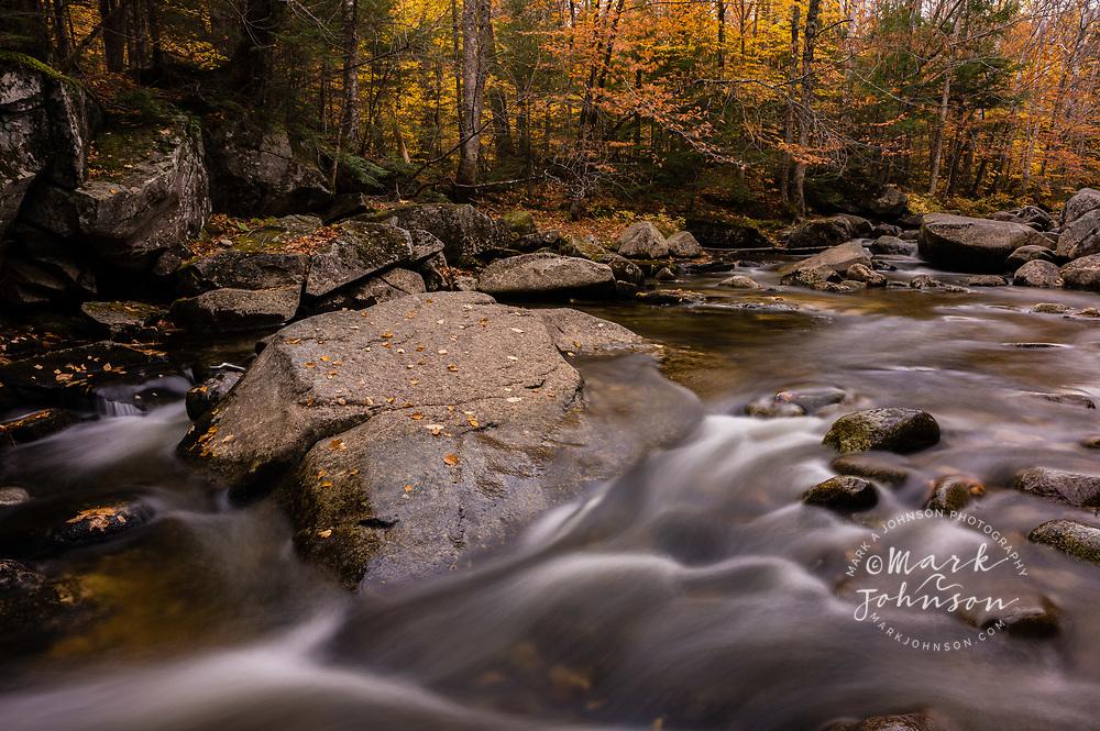 Fall color, Bear River, Grafton Notch State Park, Maine, New England, USA