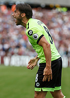 Football - 2016 / 2017 Premier League - West Ham United vs. AFC Bournemouth<br /> <br /> Bournemouth's Harry Arter abuses the linesman before receiving a yellow card for his outburst at The London Stadium.<br /> <br /> COLORSPORT/DANIEL BEARHAM