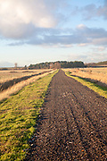 Unsurfaced dark coloured track disappearing into the distance at Gedgrave, Suffolk, England
