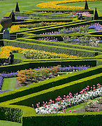 © Licensed to London News Pictures. 13/05/2015. Cliveden, UK. Gardeners tend to The formal gardens, known as the Parterre. Visitors to the National Trust property Cliveden House enjoy the warm and sunny weather today 13th May 2015. Photo credit : Stephen Simpson/LNP