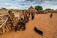 Every day life in a Hamer tribe village, Omo Valley, Ethiopia.