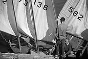 Young sailors with small sailboats docked at San Francisco Bay