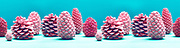 colorfull christmas card colored pine cones against a colored background