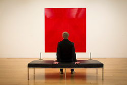 © Licensed to London News Pictures. 03/06/2013. London, UK. A man views 'Red Barn Door' (2008) a painting by British artist Gary Hume at the press view for an exhibition of his work at the Tate Britain in London today (03/06/2013). The exhibition, running in tandem with an exhibition by British artist Patrick Caulfield, is open to the public from 5th June - 1st September 2013 at the Tate Britain. Photo credit: Matt Cetti-Roberts/LNP