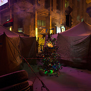 January 29, 2014 - Kiev, Ukraine: A christmas tree is seen between tents used by anti-government protestors in Kiev's Independence Square. (Paulo Nunes dos Santos)