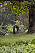 Children's tire swing hanging from a tree in a persons landscaped yard