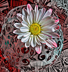 A pink and white daisy sits atop a glass over a crazy red pattern tablecloth