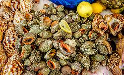 Fish market by the harbour in Essaouira, Morocco<br /> <br /> (c) Andrew Wilson | Edinburgh Elite media