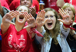Fans of Tajfun celebrate during basketball match between KK Tajfun and KK Rogaskain 2nd Round of Final of Slovenian National Basketball Championship 2014/15, on May 24, 2015 in OS Hrusevec, Sentjur pri Celju, Slovenia. Photo by Vid Ponikvar / Sportida