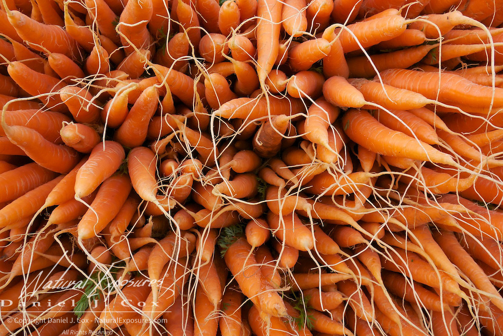 Carrots ready for sale at the Farmers Market in Galway, Ireland.