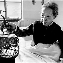 KINA. TIL ARKIV.<br /> Wang Gui Boa, 64 år. Troende buhdist med uheldbredelig hjertesygdom. Hospice. Beijing, Kina.<br /> FOTO: THOMAS SØNDERGAARD.