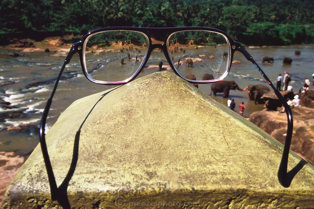 Elephant orphanage at Pinnawella, Sri Lanka. Sir Arthur C. Clarke's glasses. Sir Arthur is best known for the book 2001: A Space Odyssey.