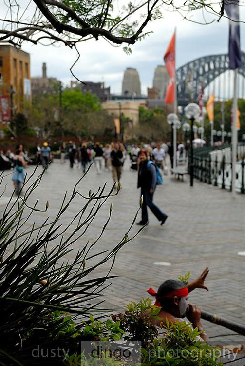 Male aboriginal busker playing the didjeridoo in Circular Quay. Sydney, Australia
