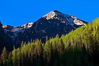 Views of the San Juan Mountains along Colorado Highway 145 near Telluride, Colorado USA